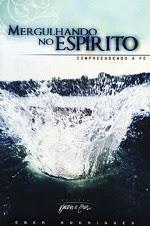 Livro - Mergulhando no Espírito
